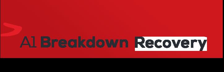 A1 BREAKDOWN RECOVERY LTD